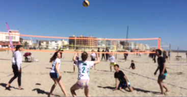 Section Volley-Ball